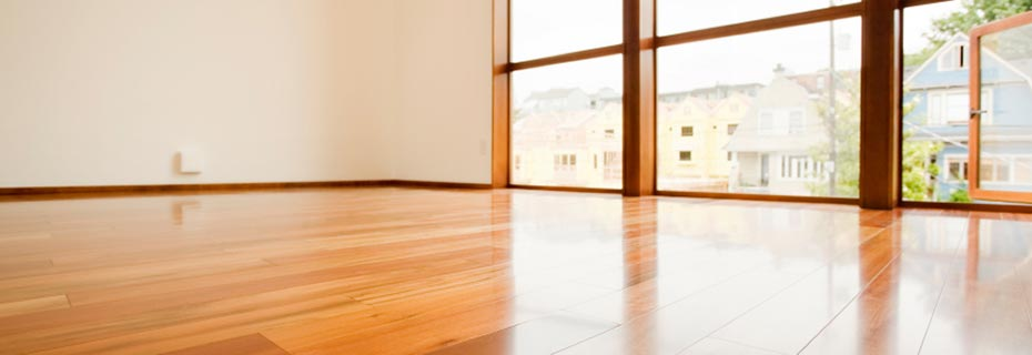 Hardwood floor reflects light from a nearby window
