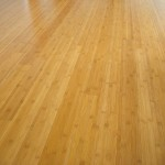 Prefinished Bamboo Floor, Caramelized Horizontal Grain - Seattle, WA